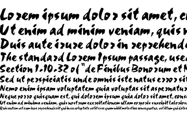 specimens TIMORA Regular font, sample TIMORA Regular font, an example of writing TIMORA Regular font, review TIMORA Regular font, preview TIMORA Regular font, TIMORA Regular font