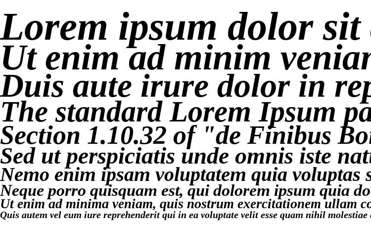 specimens Tinos Bold Italic font, sample Tinos Bold Italic font, an example of writing Tinos Bold Italic font, review Tinos Bold Italic font, preview Tinos Bold Italic font, Tinos Bold Italic font