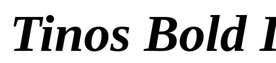 Шрифт Tinos Bold Italic