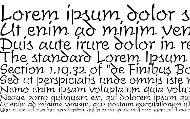 образцы шрифта TiogaScript Light Regular, образец шрифта TiogaScript Light Regular, пример написания шрифта TiogaScript Light Regular, просмотр шрифта TiogaScript Light Regular, предосмотр шрифта TiogaScript Light Regular, шрифт TiogaScript Light Regular