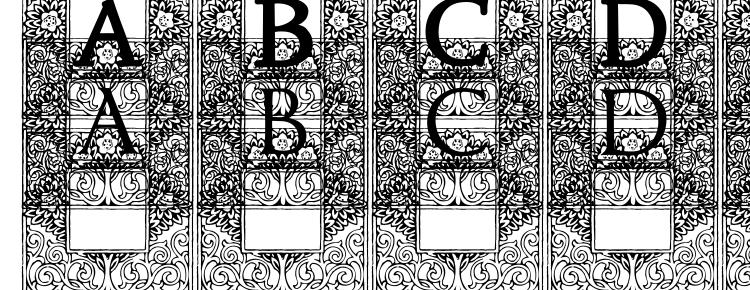 глифы шрифта Topiary Initials, символы шрифта Topiary Initials, символьная карта шрифта Topiary Initials, предварительный просмотр шрифта Topiary Initials, алфавит шрифта Topiary Initials, шрифт Topiary Initials