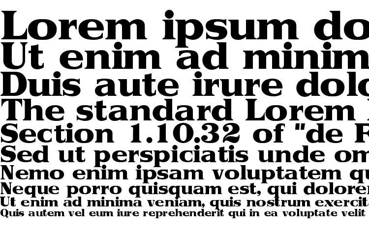 specimens Toriidisplayssk regular font, sample Toriidisplayssk regular font, an example of writing Toriidisplayssk regular font, review Toriidisplayssk regular font, preview Toriidisplayssk regular font, Toriidisplayssk regular font