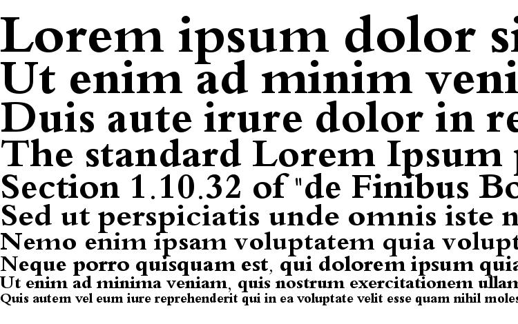 specimens Traditional Arabic Bold font, sample Traditional Arabic Bold font, an example of writing Traditional Arabic Bold font, review Traditional Arabic Bold font, preview Traditional Arabic Bold font, Traditional Arabic Bold font