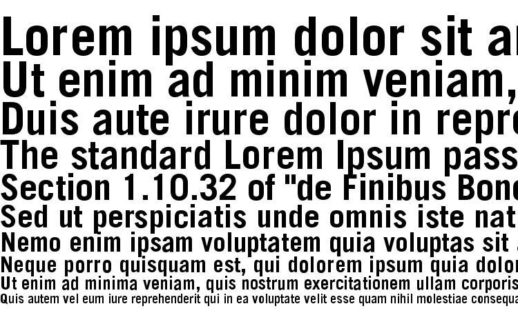 specimens TransferGothic Bold font, sample TransferGothic Bold font, an example of writing TransferGothic Bold font, review TransferGothic Bold font, preview TransferGothic Bold font, TransferGothic Bold font
