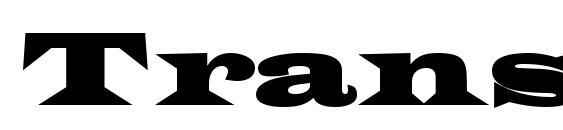 Шрифт Transversessk bold