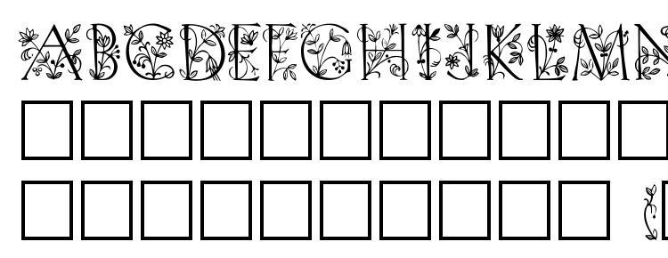 глифы шрифта Trellis, символы шрифта Trellis, символьная карта шрифта Trellis, предварительный просмотр шрифта Trellis, алфавит шрифта Trellis, шрифт Trellis