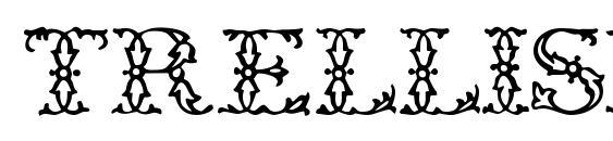 Trellisdisplaycapsssk regular Font