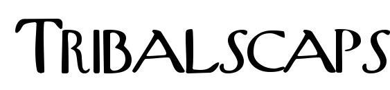 Шрифт Tribalscapsssk