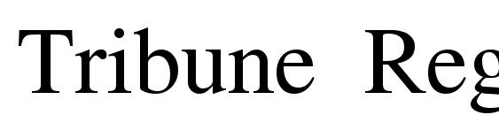 Tribune Regular Font