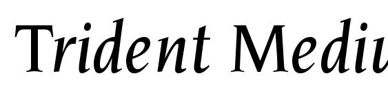 Шрифт Trident Medium SSi Medium Italic