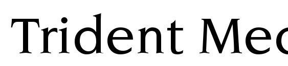 Шрифт Trident Medium SSi Medium