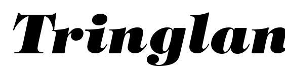 Шрифт Tringland Heavy Italic