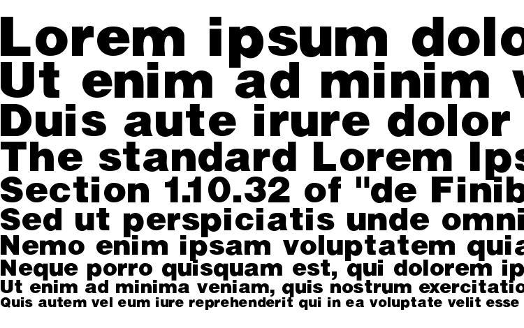 specimens Vivasssk bold font, sample Vivasssk bold font, an example of writing Vivasssk bold font, review Vivasssk bold font, preview Vivasssk bold font, Vivasssk bold font