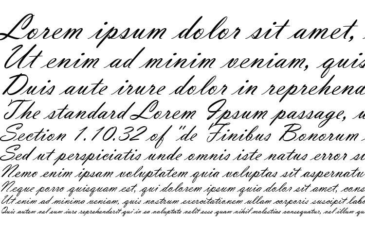 specimens Vladimir Script font, sample Vladimir Script font, an example of writing Vladimir Script font, review Vladimir Script font, preview Vladimir Script font, Vladimir Script font
