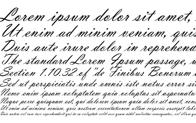 specimens VladimirScrD font, sample VladimirScrD font, an example of writing VladimirScrD font, review VladimirScrD font, preview VladimirScrD font, VladimirScrD font
