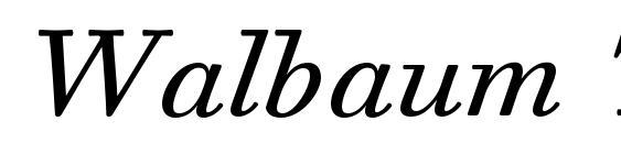 Walbaum Text Pro Italic Font, Retro Fonts