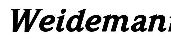 WeidemannStd BlackItalic font, free WeidemannStd BlackItalic font, preview WeidemannStd BlackItalic font
