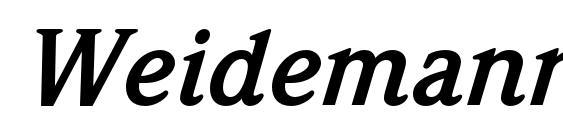 WeidemannStd BoldItalic Font