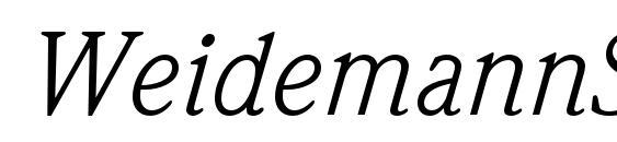 WeidemannStd BookItalic Font