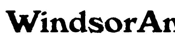 WindsorAntDBol Font