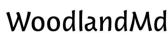 WoodlandMdITC TT Font, Sans Serif Fonts