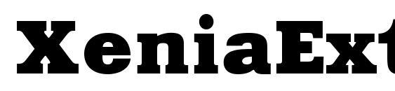 XeniaExtendedC Font, Russian Fonts