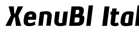 XenuBl Italic font, free XenuBl Italic font, preview XenuBl Italic font