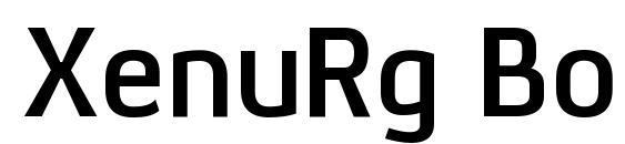 XenuRg Bold Font