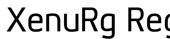 XenuRg Regular Font