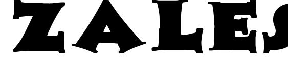 Zaleski Wd Bold Font