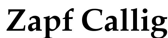 Zapf Calligraphic 801 Bold BT Font