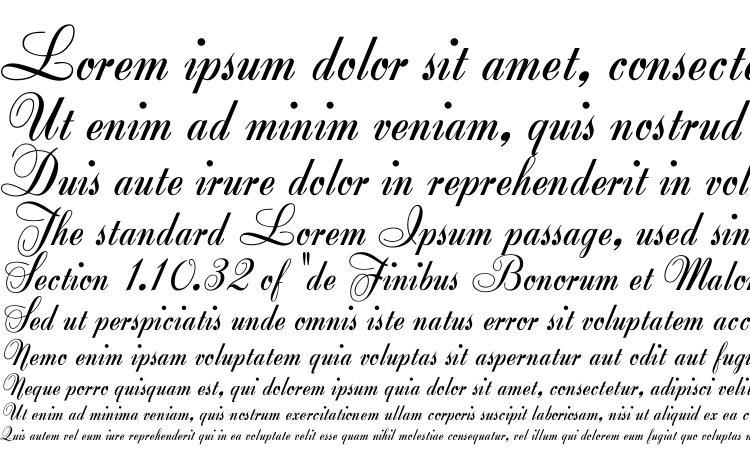 specimens Zirkon font, sample Zirkon font, an example of writing Zirkon font, review Zirkon font, preview Zirkon font, Zirkon font