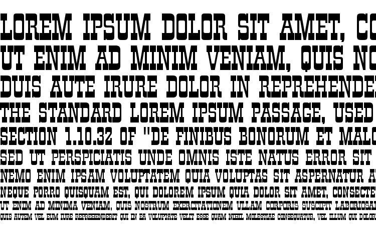 specimens ZirkusD font, sample ZirkusD font, an example of writing ZirkusD font, review ZirkusD font, preview ZirkusD font, ZirkusD font